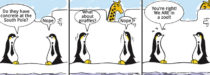 Penguin Cartoon - zoo